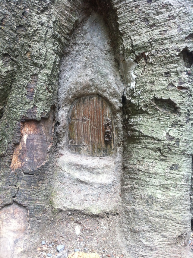 The Fairy Door
