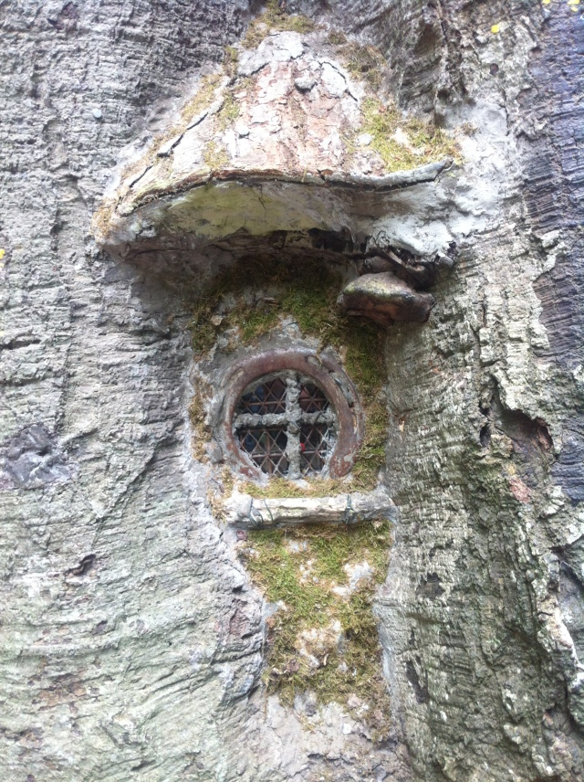 The Fairy Tree Window